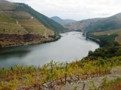 Douro Flusskreuzfahrten